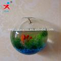 pared de vidrio borosilicato tanque de los pescados