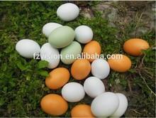 Hotsale Wood DIY Easter Eggs
