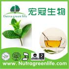 free sample Kosher IQNet CQC peppermint extract oil bergamot essential oil mint oil