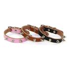 good nice dog collar