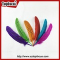 15-20cm grizzly tingidos coloridas baratos penas de ganso para fantasias de carnaval