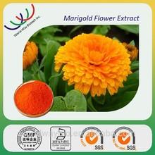 For Eye care 80% lutein marigold flowder extract ,powerful anti-oxidant lutein powder