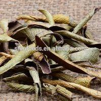 leaf tea health tea aloe vera beauty drink