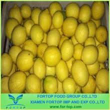 Fresh Fruit Lemon for sale