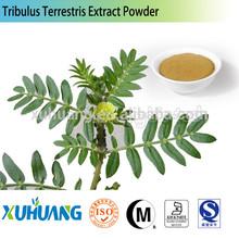 plant extract tribulus terrestris extract/Tribulus Terrestris 40%/gokharu 40% saponins