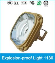 High Power Illumination ! Outdoor Explosion proof Light Induction Lamp