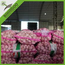 fresh hybrid garlic for sale