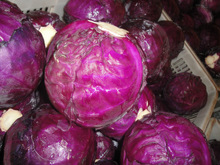 Fresh Chinese red cabbage