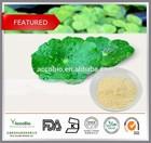 China Wholesale Gotu Kola Extract, 10%-90% Asiaticoside; Madecassoside 90%-95%; 80% Total Triterpenoid glycosides