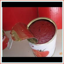 brand name of food company/wholesale tin can food/african food of tomato paste