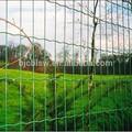Iso9001 puertas correderas nuevo cerca del jardín/decoración del jardín, puertas de hierro modelos