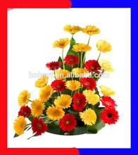 hot sale cut flower exporters