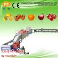 Ce y iso9001 aprobados frutas limpieza y encerado de secado de la máquina de clasificación para los cítricos/limón/de tomate