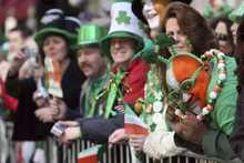 St. Patrick's Day 100th sales rabbit pig plush toys