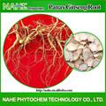 Anti- edad ginseng en polvo, parte de la raíz se utiliza, oem disponible!