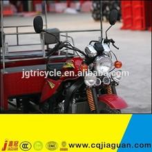 6 People Adults 175cc 250Cc Reverse Trike