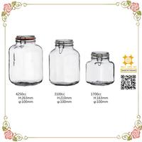 Peanut wholesales swing top glass storage jar