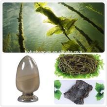 sea kelp/sea kelp powder/sea kelp extract