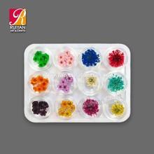 12 Colors Nail Natural Dried Flower Nail Art Tips Decoration Natural Flower Nail Designs DF001
