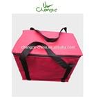 High Quality Insulated Cooler Bag,Lunch Cooler Bag,Promotional Cooler Bag
