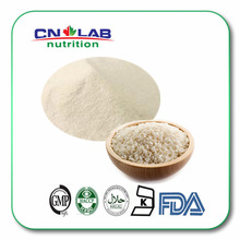 Best Quality GMP Organic Rice Protein Manufacturer/ Supplier/Factory