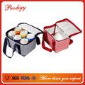 perfeito isolamento de piquenique design verificar fitness saco do refrigerador do almoço 6