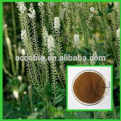 China Wholesale black cohosh, Factory supply natural black cohosh extract