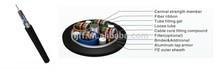 GYDTA-12 Fibers Ribbon Loose tube stranded fiber ribbon cable