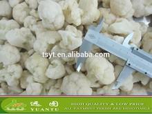 Frozen Cauliflower/Frozen Broccoli/IQF Cauliflower Hot Sale From China Supplier
