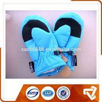 Ladies Fashion Winter Ski Glove Ski Glove