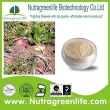 herbal medicine for sex maca wholesale