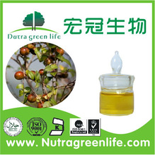 ISO manufacturer Edible Camellia Cooking Oil skin care Camellia japonica seed oil