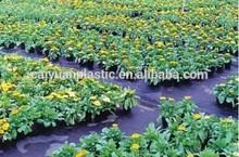 China black ground cover landscape fabric plastic mulch