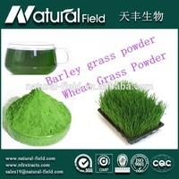 pure natural wheatgrass powder