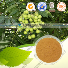 High quality Soap nut Extract with best price