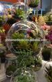 colgando florero de cristal
