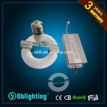 40W 80W 120W 150W 200W 250W 300W lvd induction lamp energy saving bulb