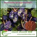 Touchhealthy de alimentação de alta qualidade 100% orgânico extrato de semente de uva suplemento