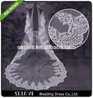 Elegant Appliqued Long Lace Wedding Veil With Rhinestones