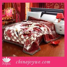 Queen 2 PLY Flower Blanket Super Soft Cozy Korean Style MIink Blanket Throw