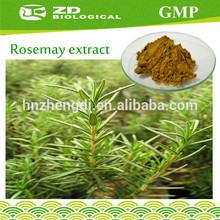 Rosemary Extract in Herbal Extract Pure Rosmarinic Acid Powder