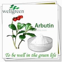 Wellgreen factory supply top quality alpha arbutin cream