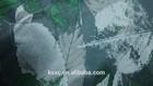 30D knitting fabric laminated micro chiffon with TPU membrane