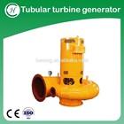 Tubular turbine hydroelectric power station