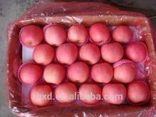 Apple Type and Pome Fruit Product Type organic Fuji apple