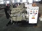 Chinese YANGDONG Engine 7.5kW Diesel Generator