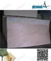 Linyi 2mm 1220*2440mm okoume bord sperrholz