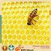 professional 100%pure natural medicinal multifloral honey supplier