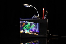 Fashionable manufacture? custom mini acrylic aquarium decor