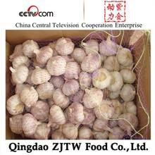 China Garlic Fresh Vegetable Price List